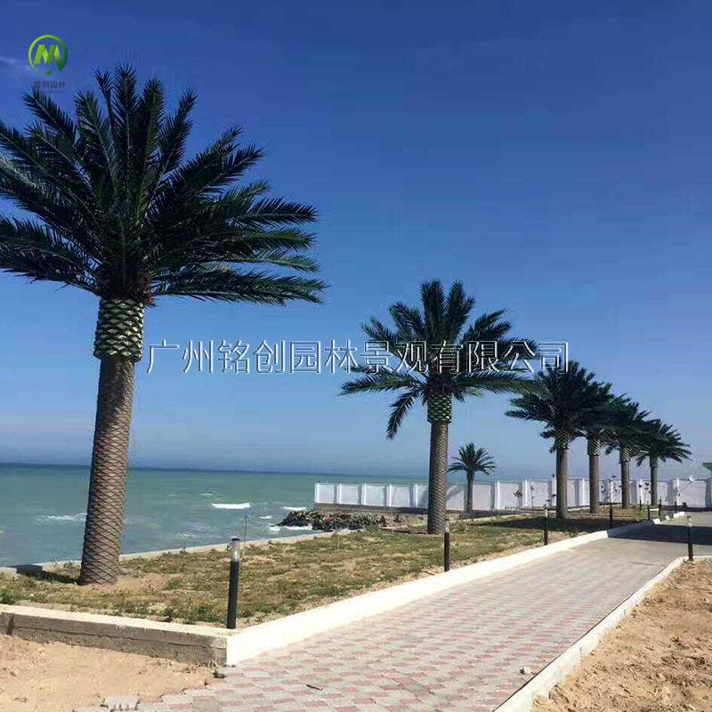 内海仿真中东海藻树
