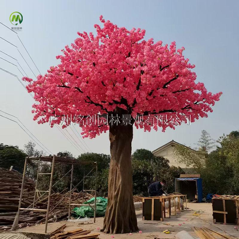 贵州天虹广场樱花树